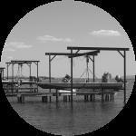 2009- Augefi Colonise Le Bassin De Thau NB