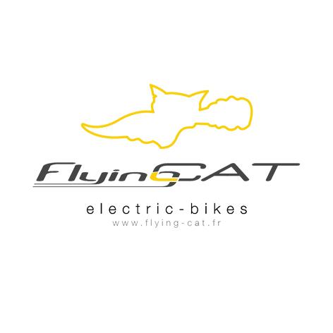 Logo FLYING CAT